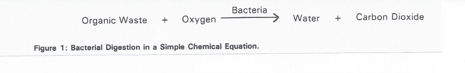 Chemex 630 bacterial digestant
